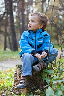 Free Little Boy Sitting On The  Tree Stump, Fall, Park Stock Photos - 21680863