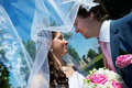 Free Happy Bride And Groom In Park Royalty Free Stock Photos - 21693048