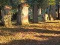 Free Jewish Cemetery Royalty Free Stock Photos - 21693718