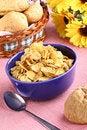 Free Healthy Breakfast Stock Image - 21698381