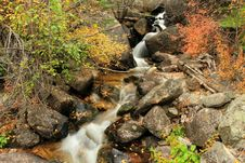 Free Roaring Creek 4, Poudre Canyon Stock Photo - 21695350