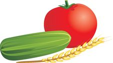 Tomato, Cucumber And Wheat Ear Royalty Free Stock Photos