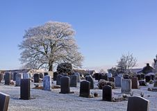 Free Winter Graveyard Royalty Free Stock Photo - 21699635