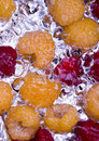 Free The Raspberries Royalty Free Stock Images - 2174589