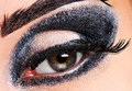 Free Fashion Make Up Of Eye. Stock Photos - 2178273