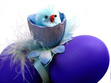 Free Chicken With Blue Eggs Royalty Free Stock Photo - 2170875