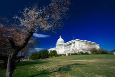 Free U.S. Capitol On A Sunny Spring Royalty Free Stock Images - 2171979