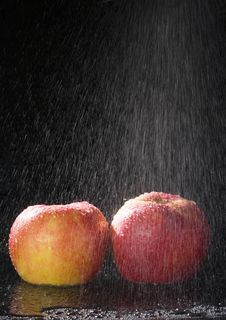 Free Apples In The Rain Royalty Free Stock Image - 2173966