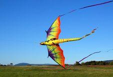 Free Kite Flying Season Royalty Free Stock Photos - 2174178