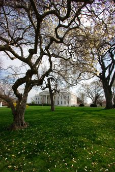 Free The White House In Spring Royalty Free Stock Images - 2177859
