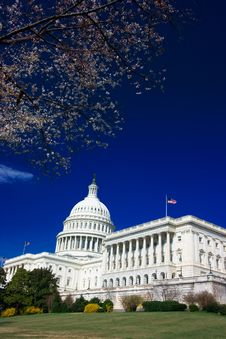 Free U.S. Capitol On A Sunny Spring Stock Photos - 2177903