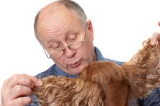 Free Bald Senior Man With Dog Stock Image - 2178731