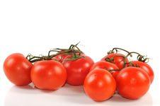 Free Tomato Stock Photography - 21706242