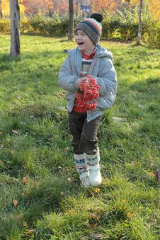 Free Boy With Rowan Berries Royalty Free Stock Photo - 21709225