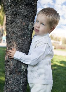 Free Little Boy Standing Near The Tree Royalty Free Stock Photo - 21714595