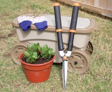 Free Garden Tools Royalty Free Stock Images - 21718009