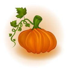 Free Pumpkin Stock Photography - 21722542