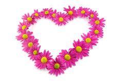 Free Pink Flowers In A Shape Of A Heart Royalty Free Stock Images - 21723409