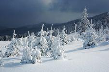 Free Winter Landscape Stock Photography - 21725802