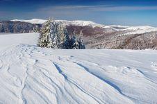 Free Winter Landscape Stock Photos - 21725893