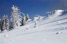 Free Winter Landscape Stock Photo - 21728570