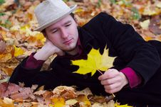 Handsome Man Lying In Autumn Leaves Stock Photography