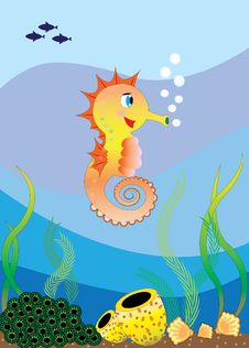 A Seahorse In The Sea Royalty Free Stock Photo