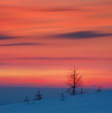 Free Winter Landscape Royalty Free Stock Image - 21740876