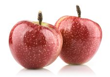 Free Red Ripe Apple Royalty Free Stock Photo - 21743545