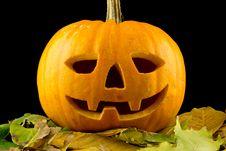 Free Halloween Pumpkin Stock Images - 21750214