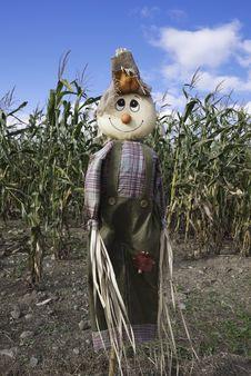 Free Cornfield Scarecrow Stock Images - 21752054