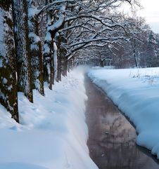 Free Winter Park Stream In Snow Royalty Free Stock Photos - 21760148