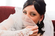 Free Portrait Of A Beautiful Bride Royalty Free Stock Photography - 21767487
