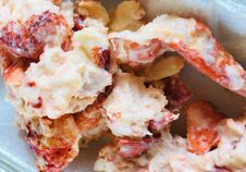 Free Big Juicy Lobster Roll, A New England Favorite Royalty Free Stock Photography - 217694517