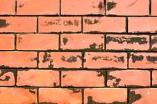 Free Close Up Of Grunge Red Brick Wall Stock Photography - 21773632