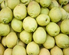 Pile Of Pear Royalty Free Stock Images