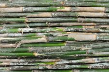 Free Bamboo Background Royalty Free Stock Images - 21773939