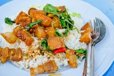 Free Crispy Pork With Thai Basil Sauce Stock Photos - 21774223
