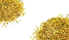 Free Bee Pollen Royalty Free Stock Photos - 21775928