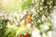 Free Spring Fairytale Royalty Free Stock Photo - 21776715