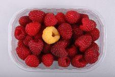 Free Raspberries Royalty Free Stock Photography - 21777847