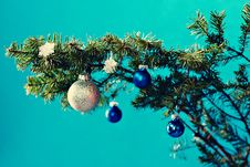 Free Christmas Decoration Royalty Free Stock Photography - 21779077