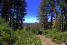 Free Yosemite Trail  In  View Royalty Free Stock Photos - 217838248