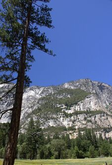 Half Dome Mountain In Yosemite Trail Royalty Free Stock Photo