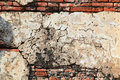 Free Temple Wall Background Royalty Free Stock Photo - 21799915
