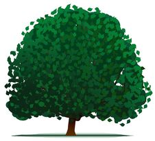 Free Green Tree Stock Images - 21797224