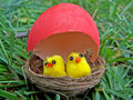Free Baby Toy Chicken In The Nest Royalty Free Stock Photography - 2182577