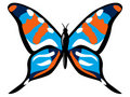 Free Colourful Butterfly Stock Photography - 2185702