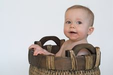 Free Basket Baby Stock Photography - 2182012