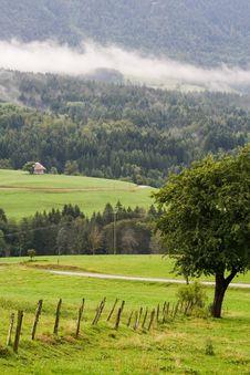 Alpine Scene4 Stock Image